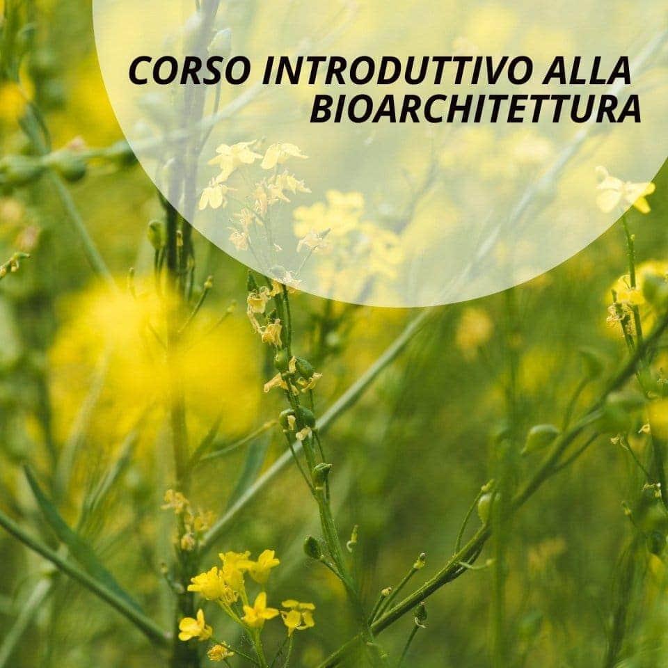 corso-introduttivo-bio-archittettura